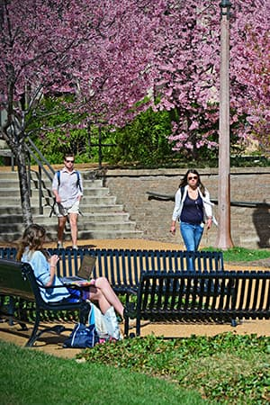 Umsl Academic Calendar 2022.Engineering Academic Calendar Mckelvey School Of Engineering At Washington University In St Louis