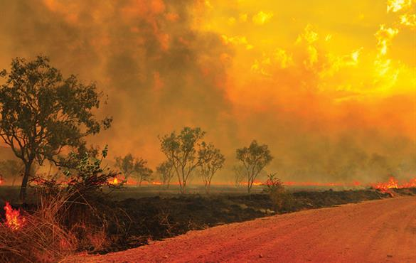 A wildfire burns in the Kimberley region of Western Australia. Credit: John Crux Photography/Getty Images